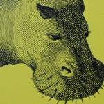 Arno Geiger – Selbstporträt mit Flusspferd