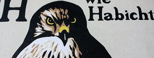 Helen Macdonald – H wie Habicht