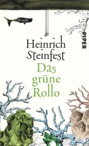 Steinfest_H_Das_grüne_Rollo