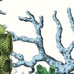 Heinrich Steinfest – Das grüne Rollo
